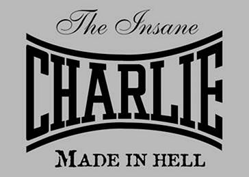 Charlie Boxing Gloves : Leather Boxing Gloves for an affordable price!